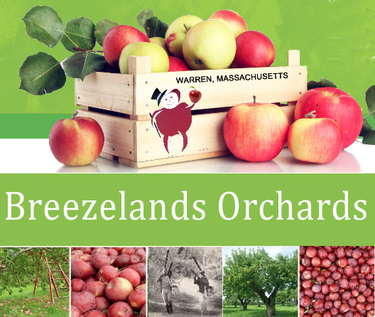 https://www.breezelandsorchards.com/